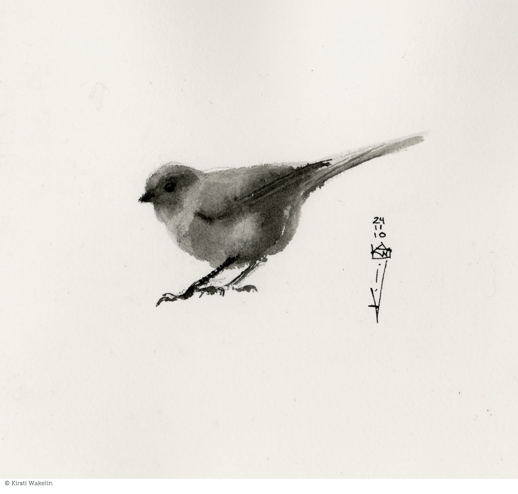 drawing_birds_bushtit_1024px