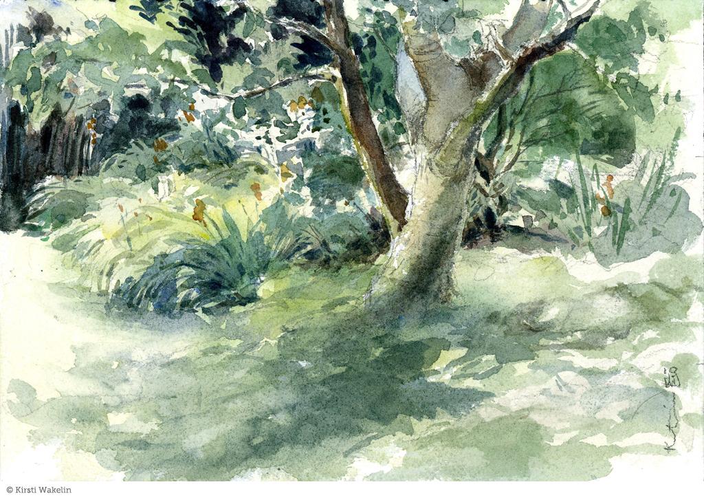 Sketch_landscape_bowengarden_1024px