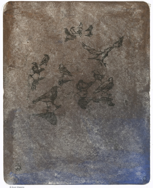 Sketch_Monotype_PuddleCrows_1024