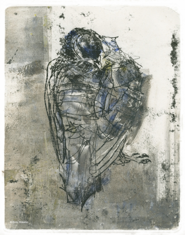 Sketch_Monotype_Pigeon_1024px