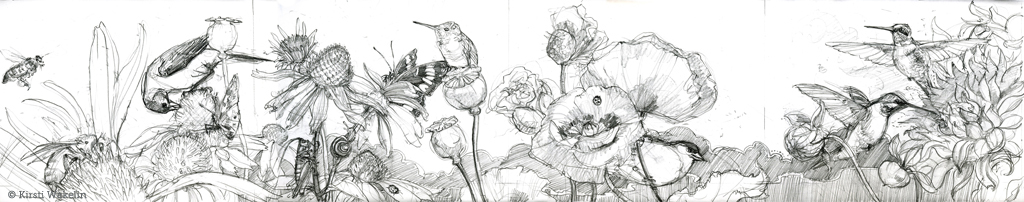 SKETCH_hummingbirds_panel_1024
