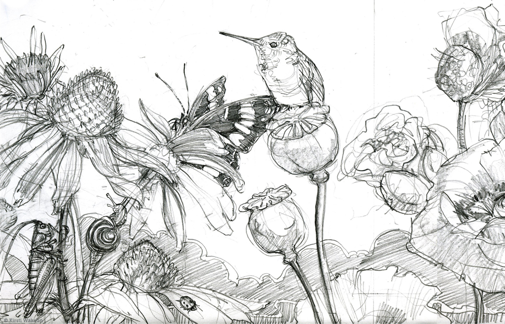 SKETCH_hummingbirds_panel_det2_1024