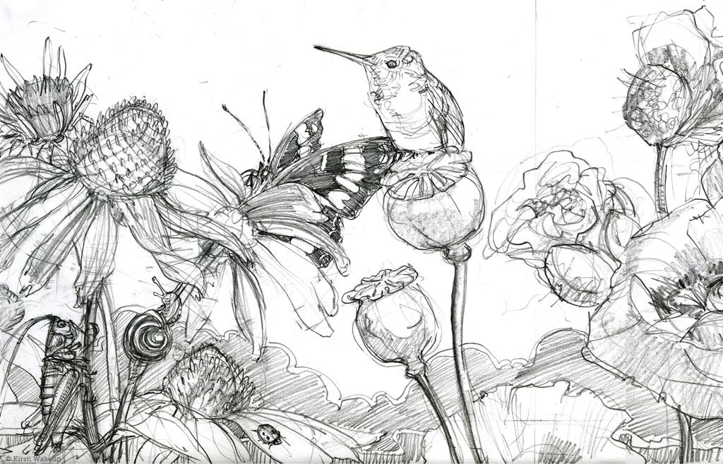 SKETCH_hummingbirds_panel_det2_1024